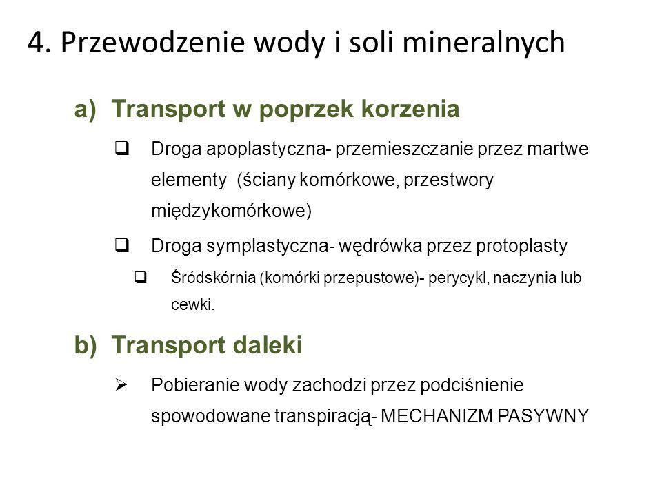 4. Przewodzenie wody i soli mineralnych