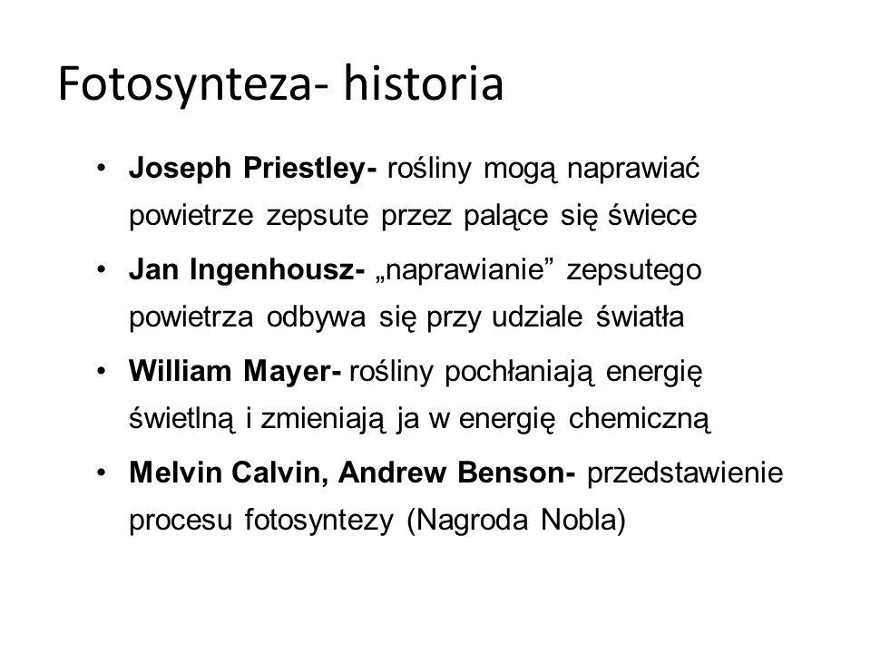 Fotosynteza- historia