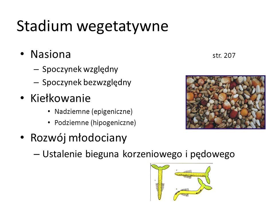 Stadium wegetatywne Nasiona str. 207 Kiełkowanie Rozwój młodociany