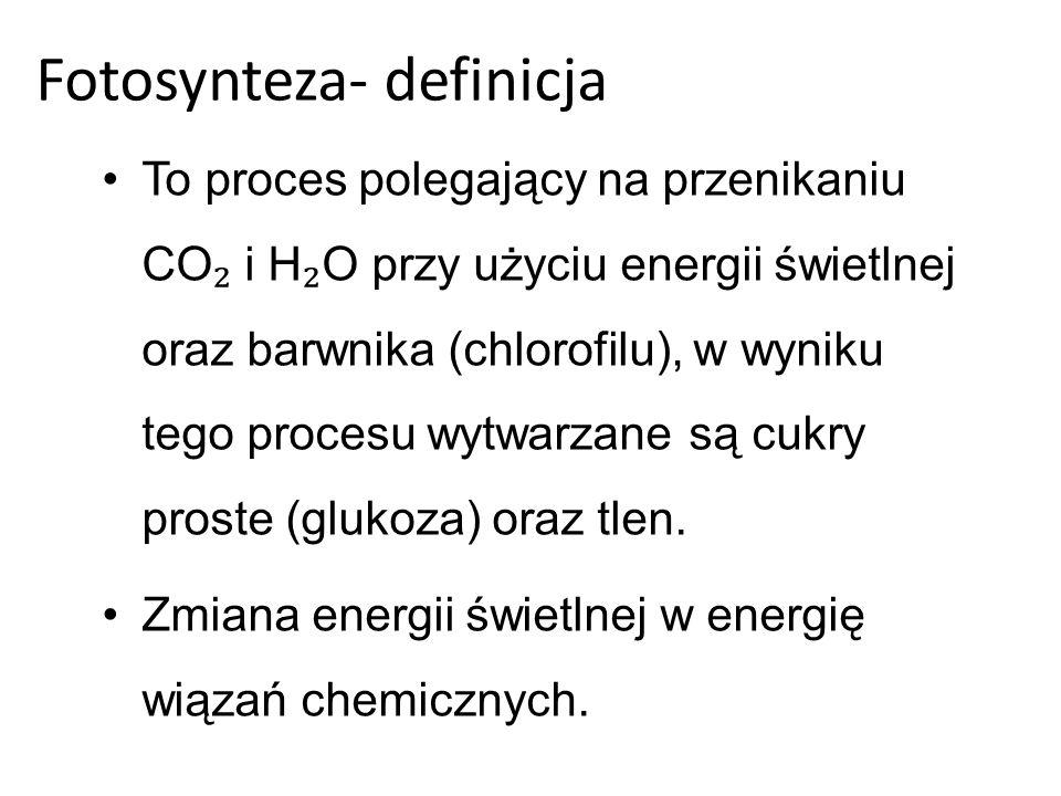 Fotosynteza- definicja