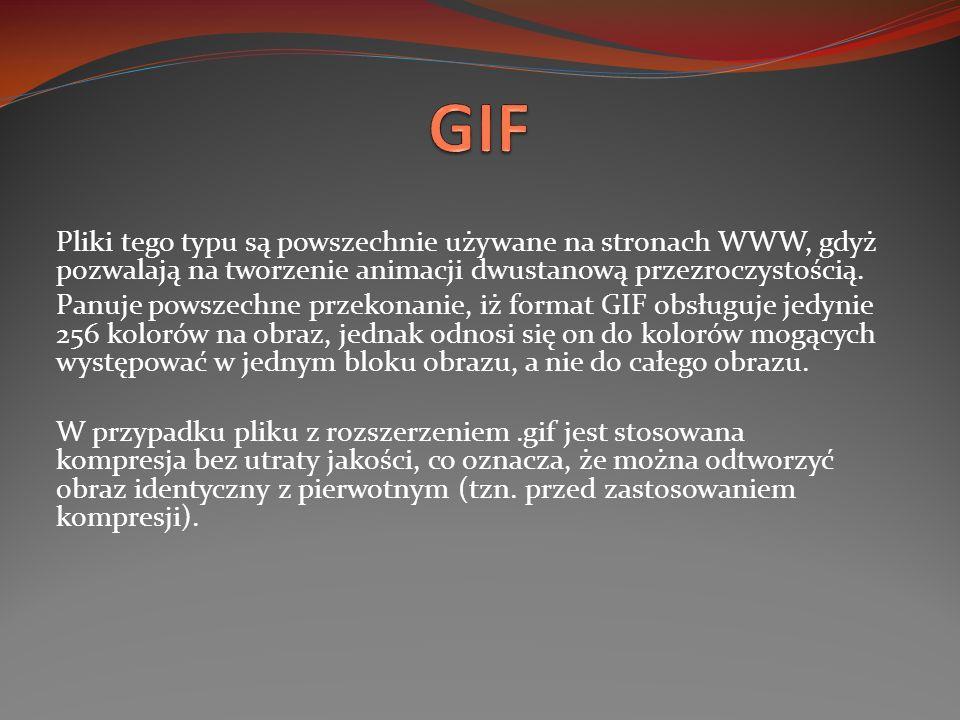 GIF Pliki tego typu są powszechnie używane na stronach WWW, gdyż pozwalają na tworzenie animacji dwustanową przezroczystością.