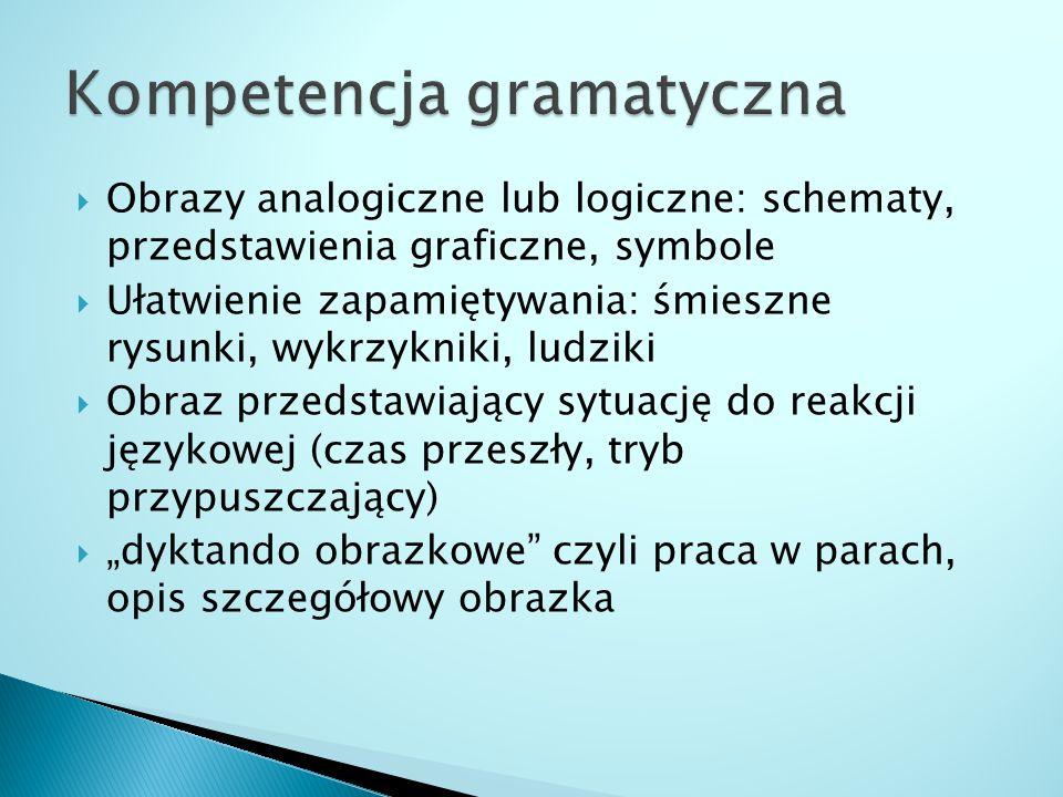 Kompetencja gramatyczna