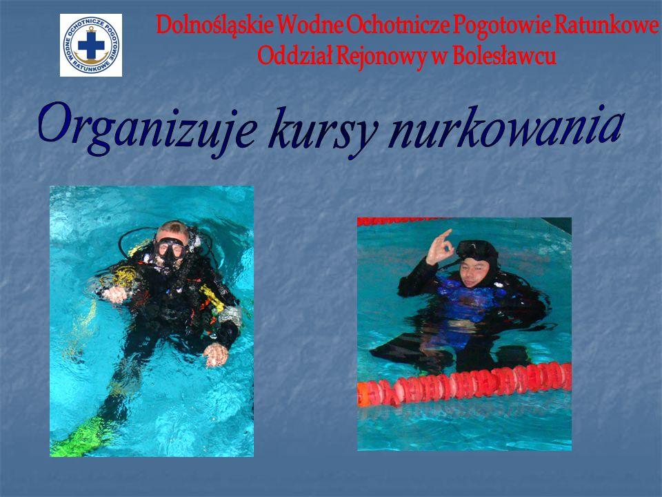Organizuje kursy nurkowania
