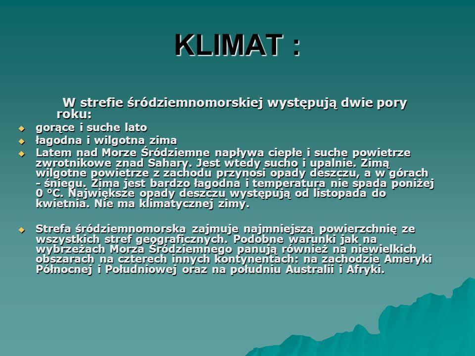 KLIMAT : W strefie śródziemnomorskiej występują dwie pory roku: