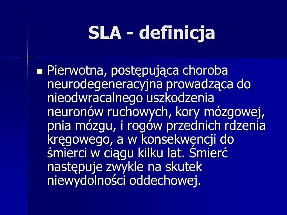 SLA - definicja