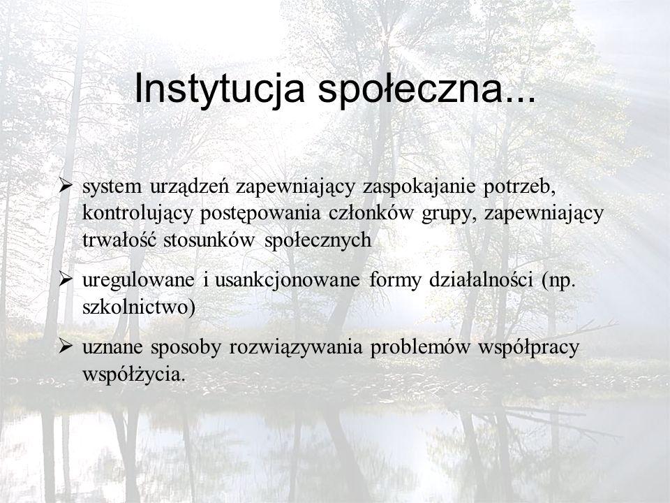 Instytucja społeczna...