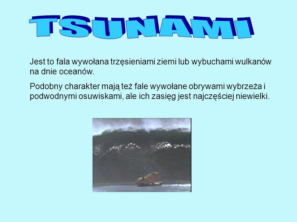 TSUNAMI Jest to fala wywołana trzęsieniami ziemi lub wybuchami wulkanów na dnie oceanów.
