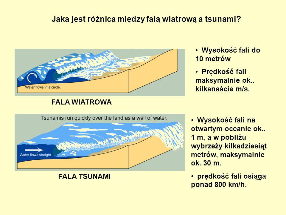 Jaka jest różnica między falą wiatrową a tsunami