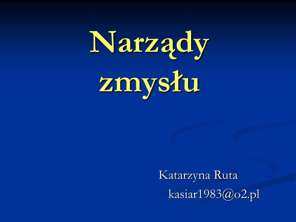 Katarzyna Ruta kasiar1983@o2.pl