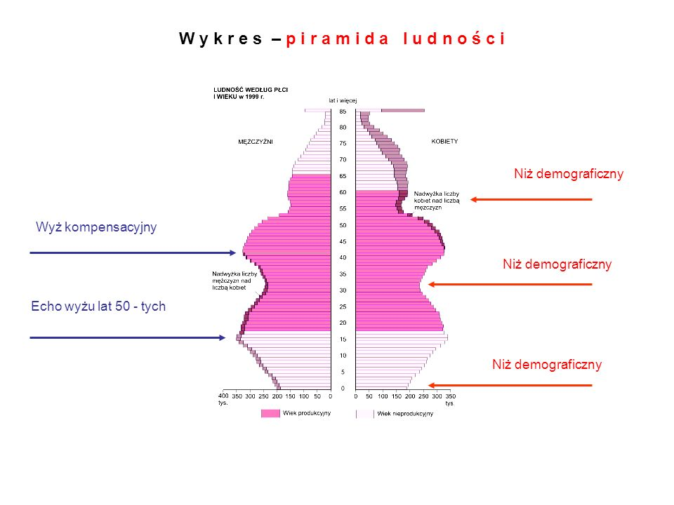 W y k r e s – p i r a m i d a l u d n o ś c i