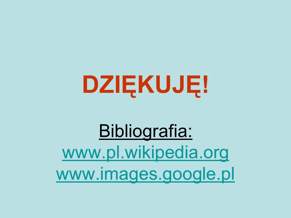 DZIĘKUJĘ! Bibliografia: www.pl.wikipedia.org www.images.google.pl