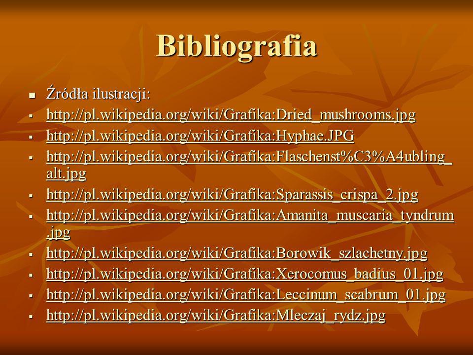 Bibliografia Źródła ilustracji: