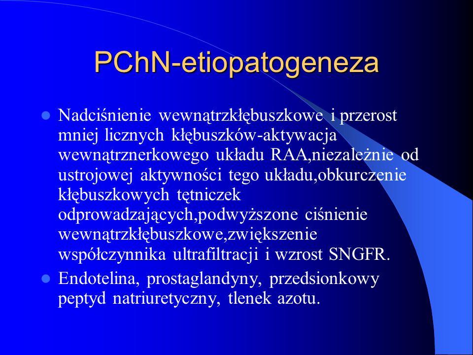 PChN-etiopatogeneza