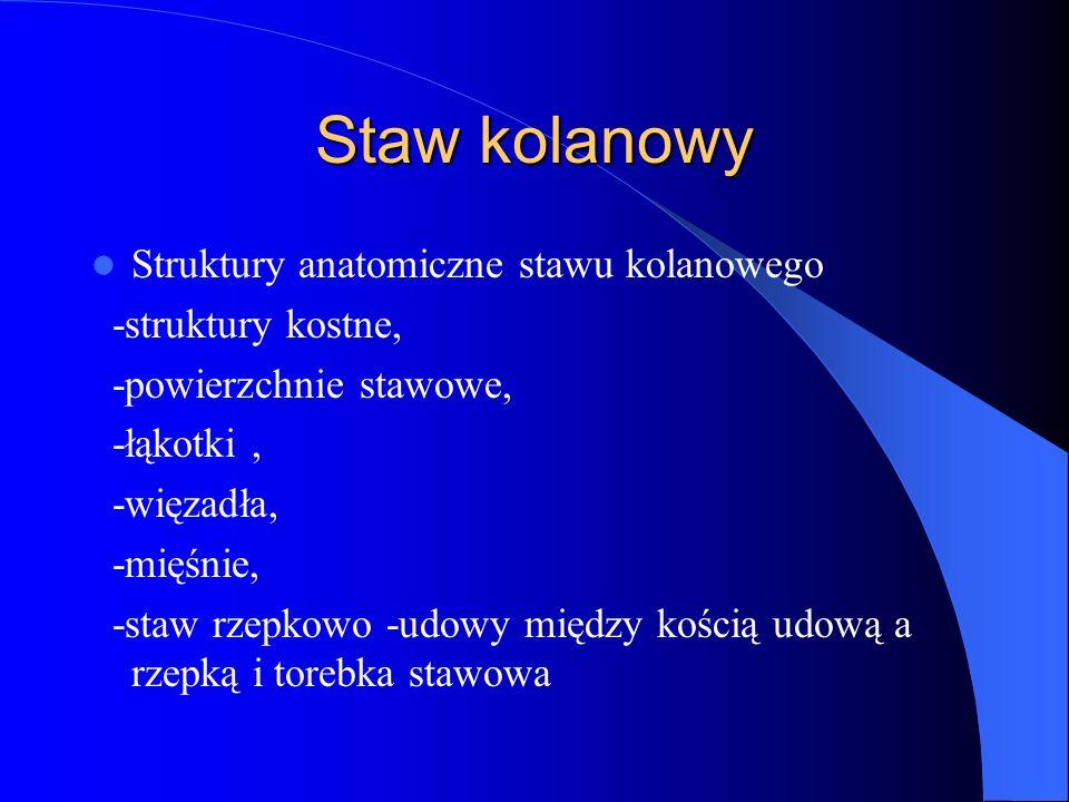 Staw kolanowy Struktury anatomiczne stawu kolanowego