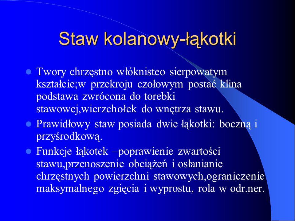 Staw kolanowy-łąkotki