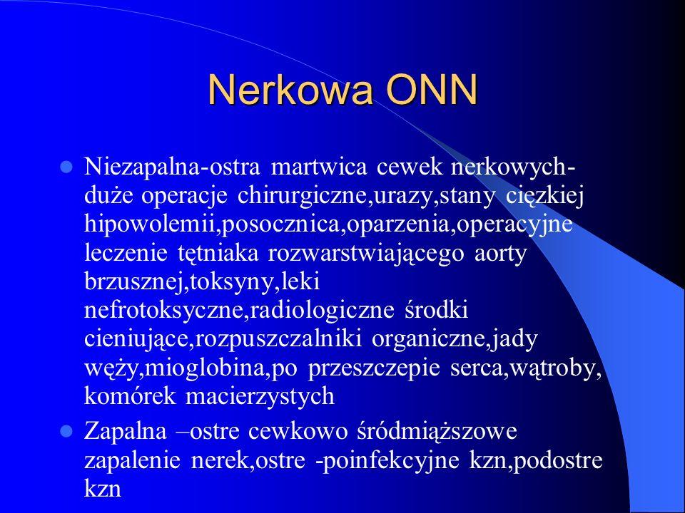 Nerkowa ONN
