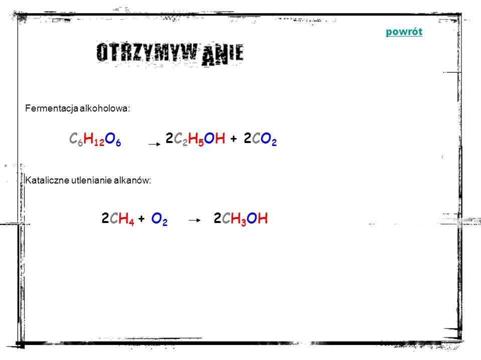 C6H12O6 2C2H5OH + 2CO2 2CH4 + O2 2CH3OH powrót Fermentacja alkoholowa: