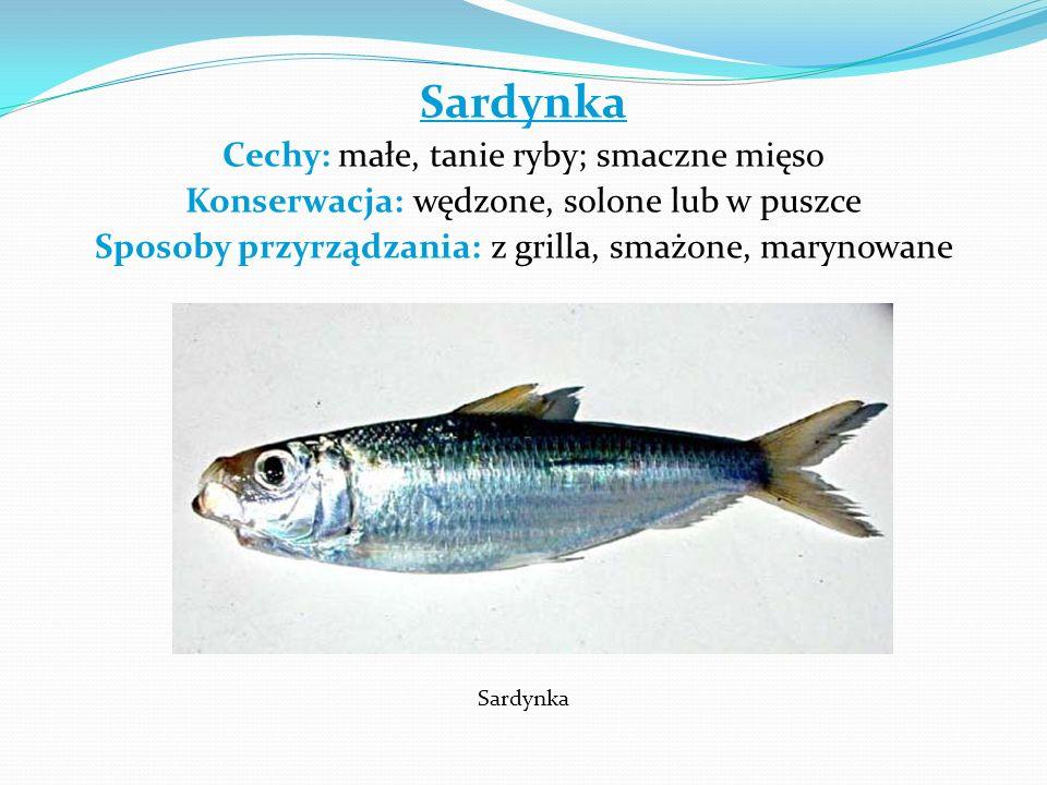 Sardynka Cechy: małe, tanie ryby; smaczne mięso
