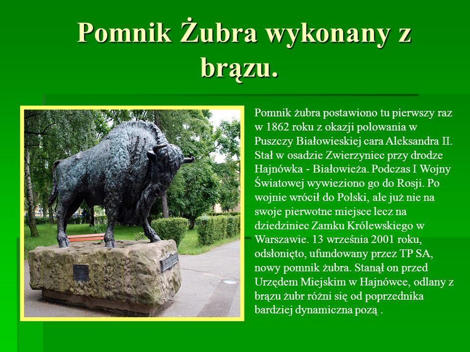 Pomnik Żubra wykonany z brązu.