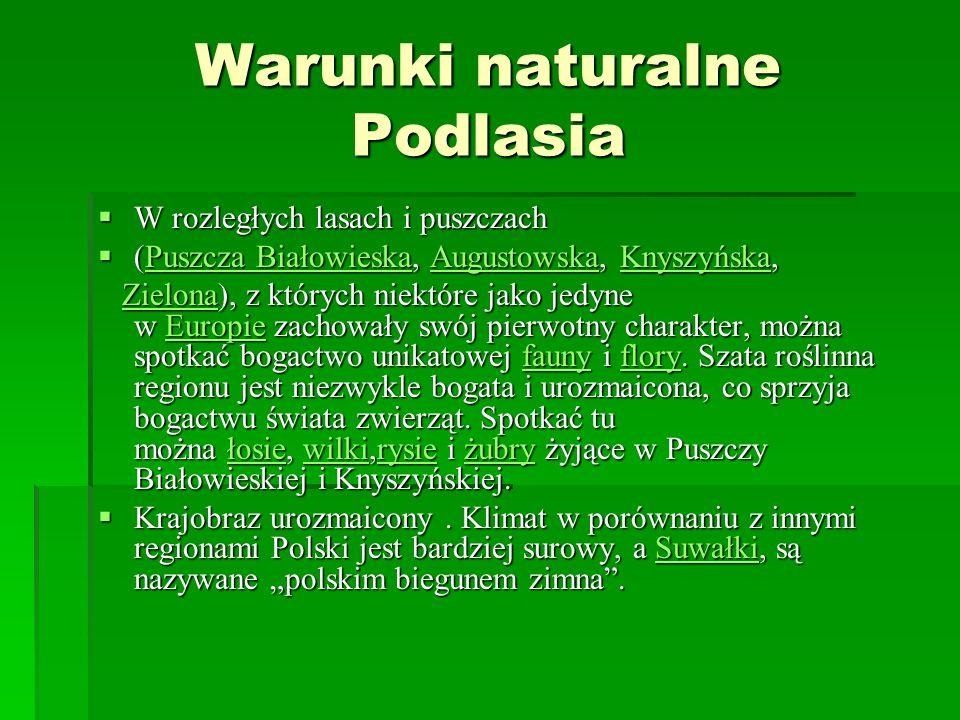 Warunki naturalne Podlasia