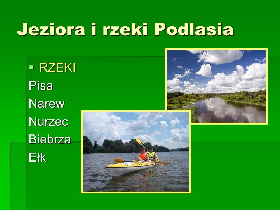 Jeziora i rzeki Podlasia
