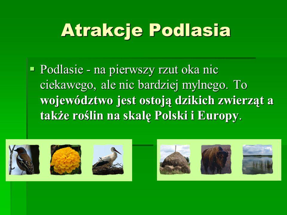 Atrakcje Podlasia