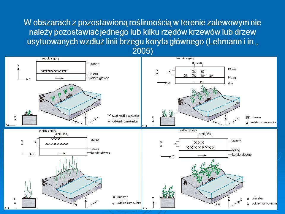 W obszarach z pozostawioną roślinnością w terenie zalewowym nie należy pozostawiać jednego lub kilku rzędów krzewów lub drzew usytuowanych wzdłuż linii brzegu koryta głównego (Lehmann i in., 2005)