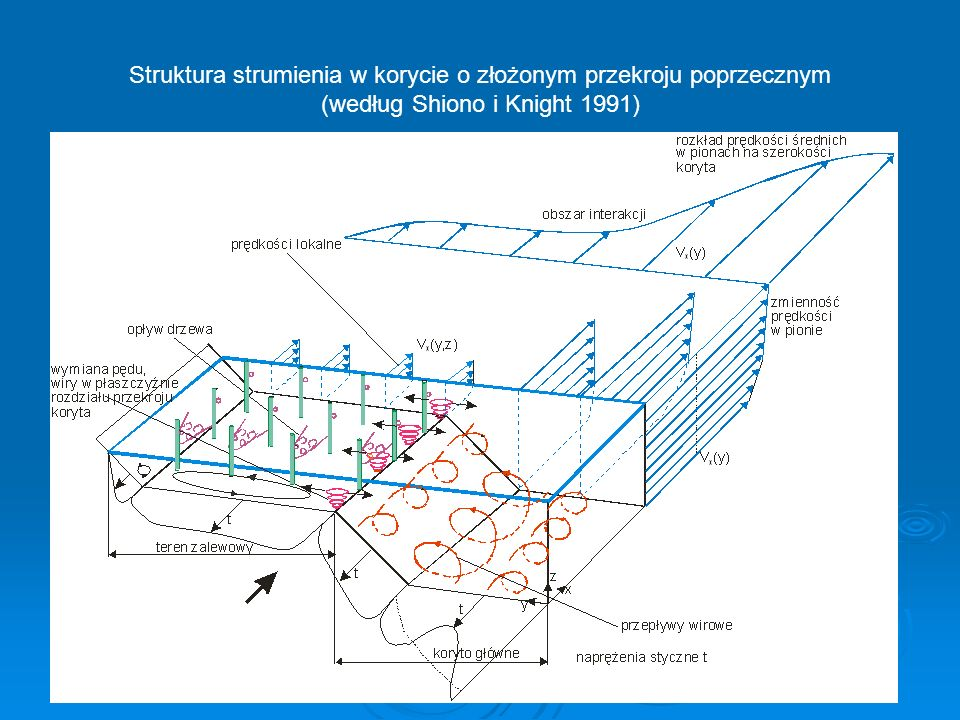 Struktura strumienia w korycie o złożonym przekroju poprzecznym (według Shiono i Knight 1991)