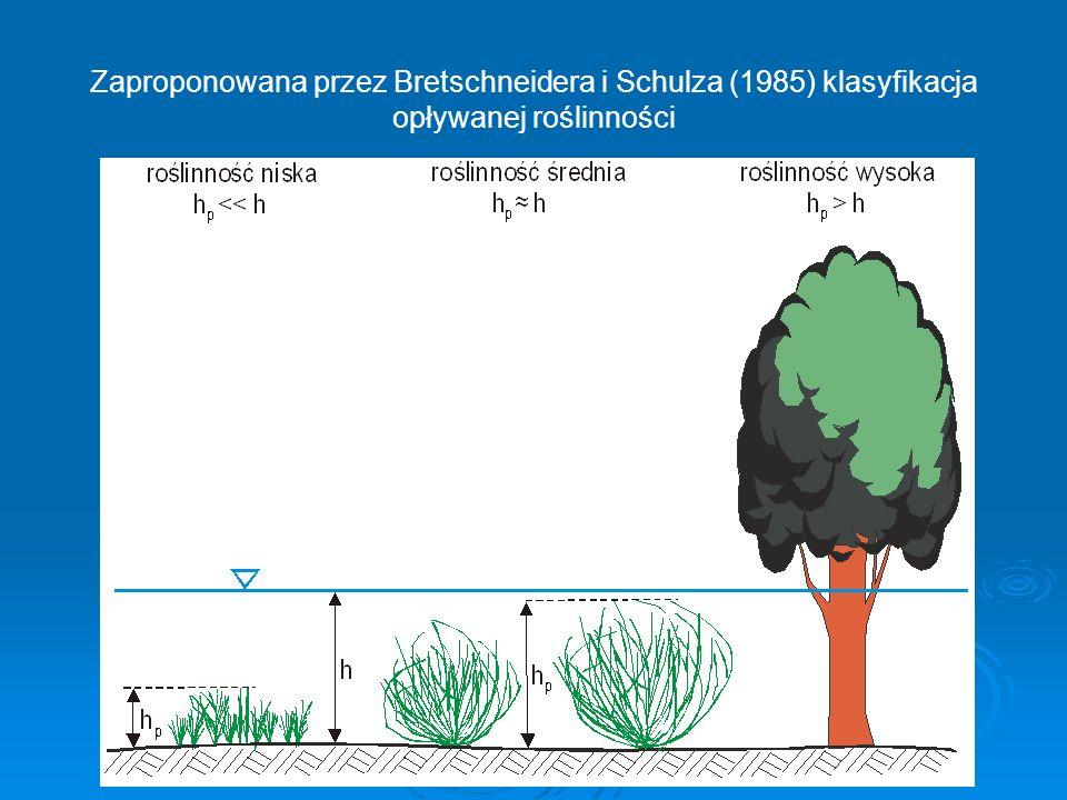 Zaproponowana przez Bretschneidera i Schulza (1985) klasyfikacja opływanej roślinności