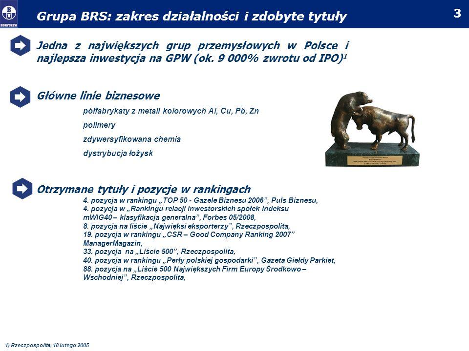 Grupa BRS: zakres działalności i zdobyte tytuły