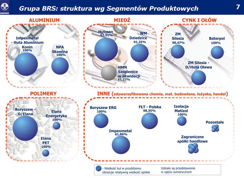 Grupa BRS: struktura wg Segmentów Produktowych