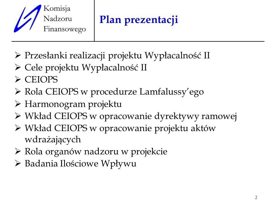 Plan prezentacji Przesłanki realizacji projektu Wypłacalność II