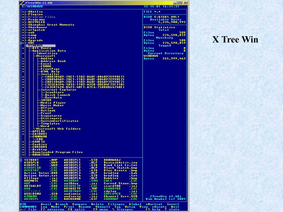 X Tree Win