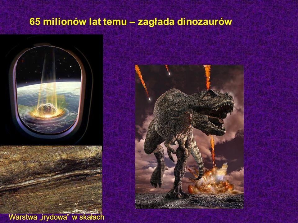65 milionów lat temu – zagłada dinozaurów