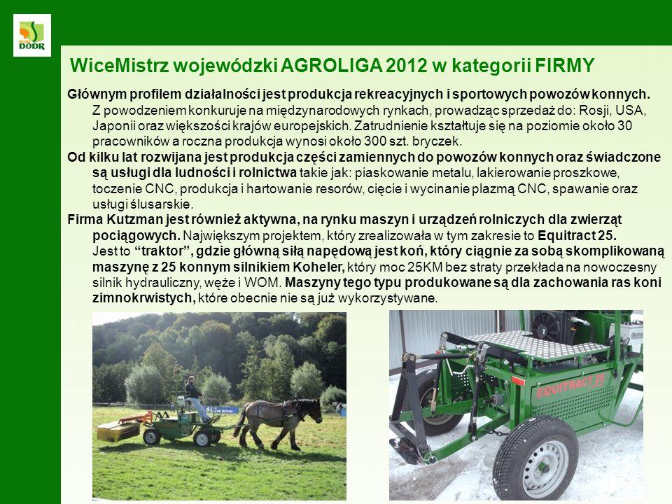 WiceMistrz wojewódzki AGROLIGA 2012 w kategorii FIRMY