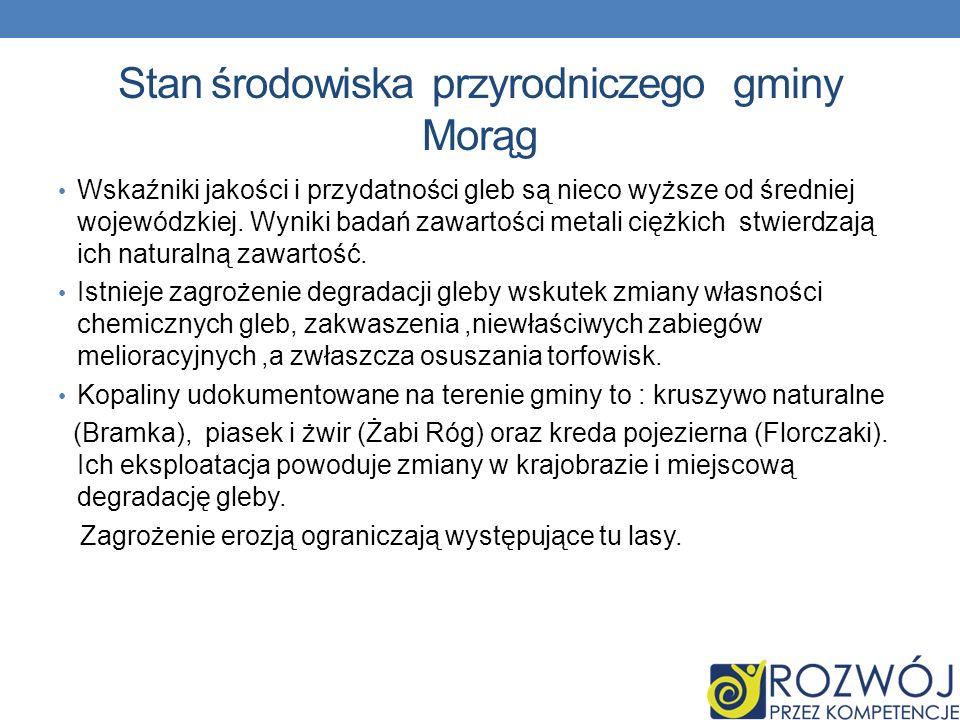 Stan środowiska przyrodniczego gminy Morąg
