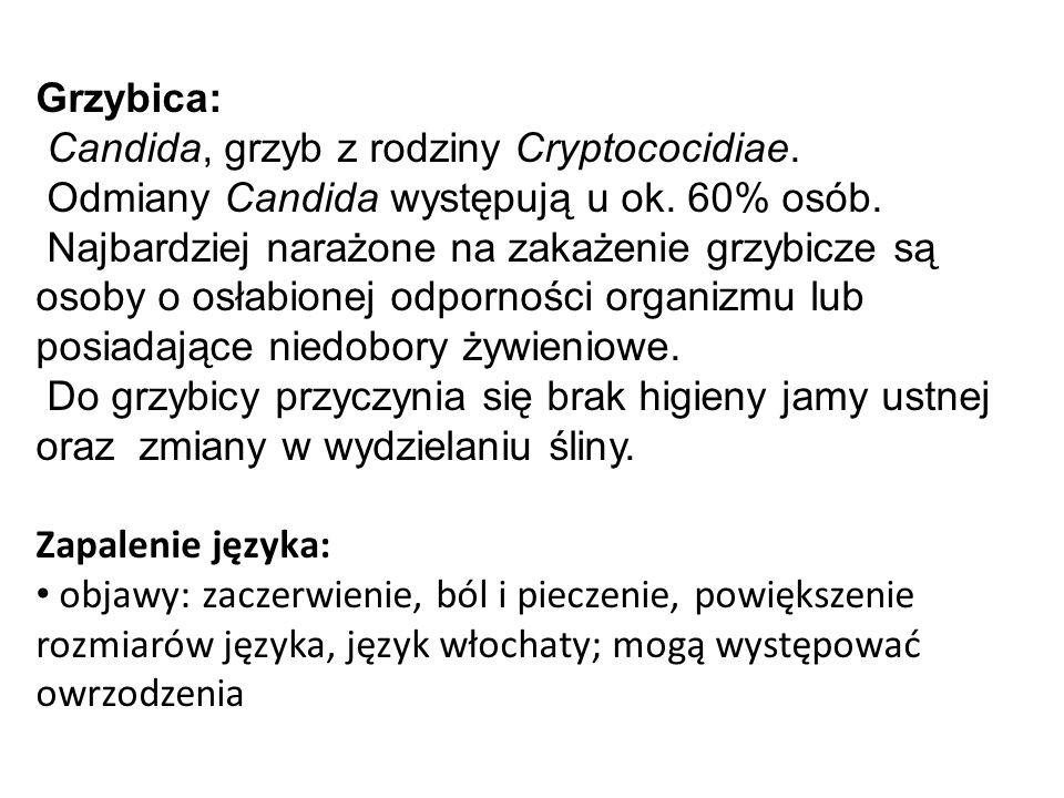 Grzybica: Candida, grzyb z rodziny Cryptococidiae. Odmiany Candida występują u ok. 60% osób.
