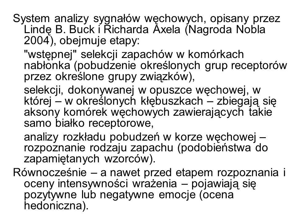 System analizy sygnałów węchowych, opisany przez Lindę B