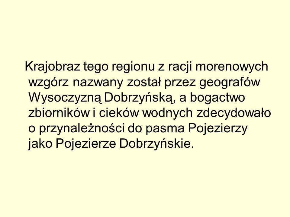 Krajobraz tego regionu z racji morenowych wzgórz nazwany został przez geografów Wysoczyzną Dobrzyńską, a bogactwo zbiorników i cieków wodnych zdecydowało o przynależności do pasma Pojezierzy jako Pojezierze Dobrzyńskie.