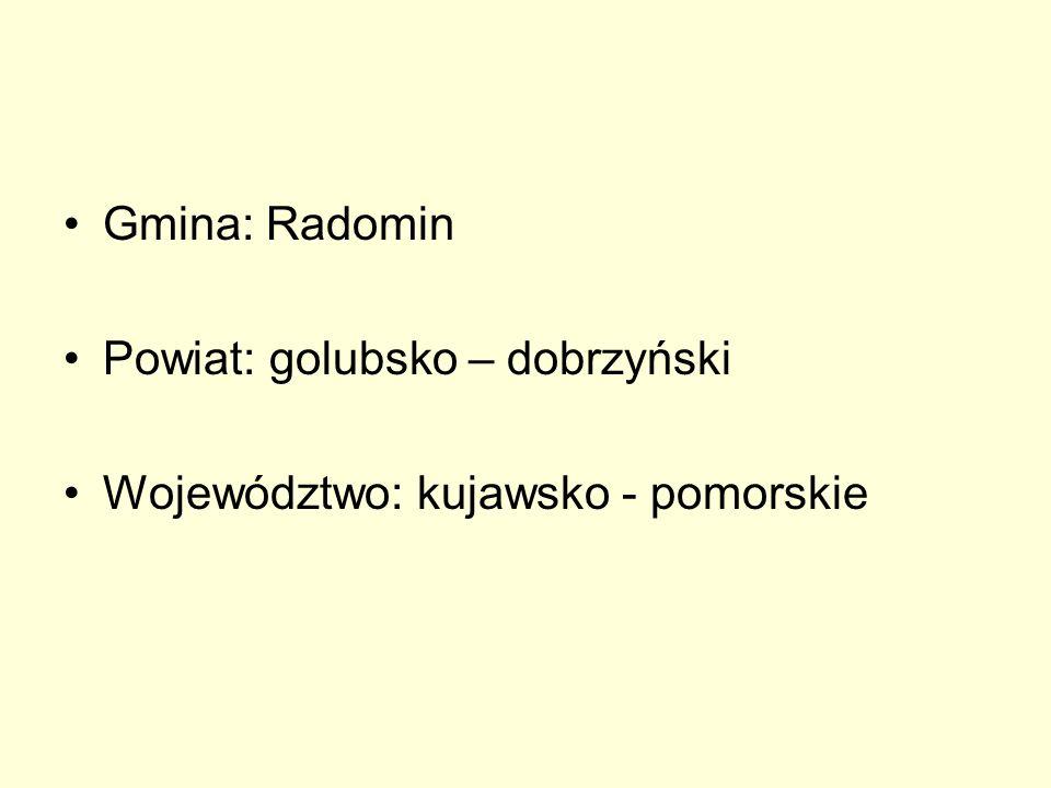 Gmina: Radomin Powiat: golubsko – dobrzyński Województwo: kujawsko - pomorskie