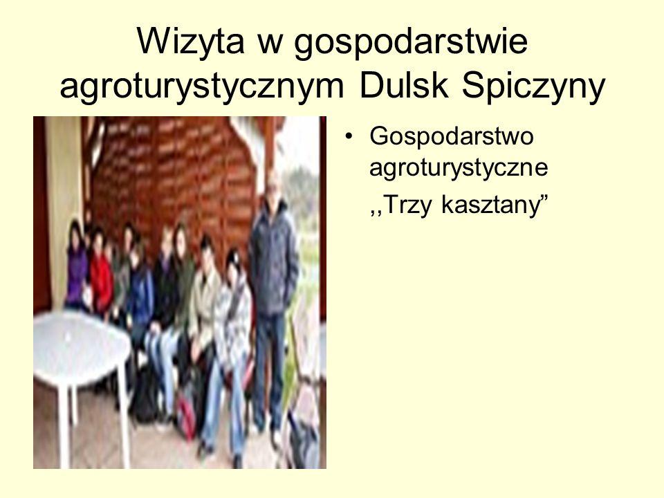 Wizyta w gospodarstwie agroturystycznym Dulsk Spiczyny