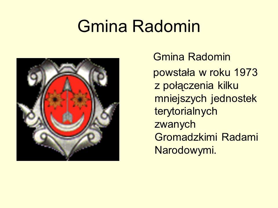 Gmina Radomin Gmina Radomin