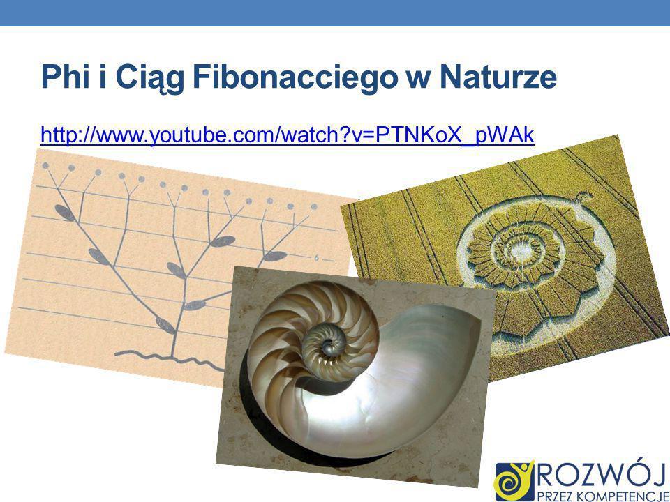 Phi i Ciąg Fibonacciego w Naturze