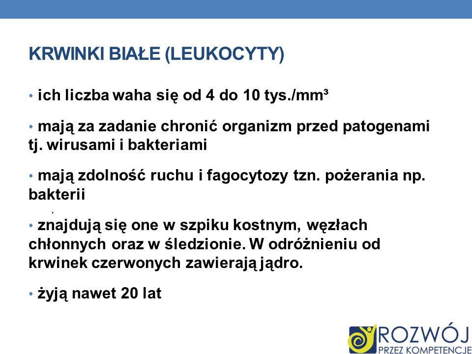 Krwinki białe (leukocyty)