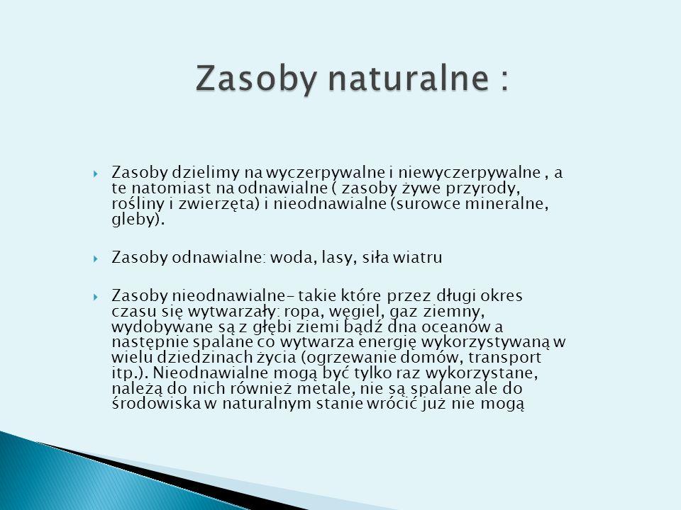Zasoby naturalne :