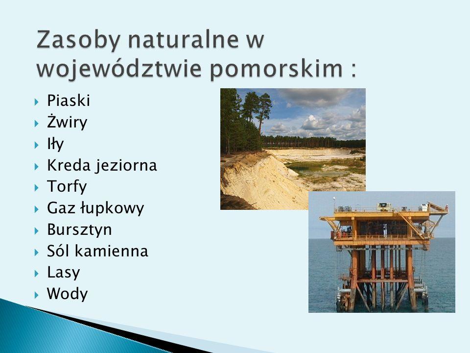 Zasoby naturalne w województwie pomorskim :
