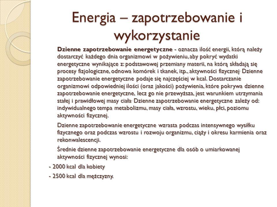 Energia – zapotrzebowanie i wykorzystanie
