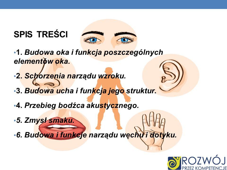 Spis treści 1. Budowa oka i funkcja poszczególnych elementów oka.