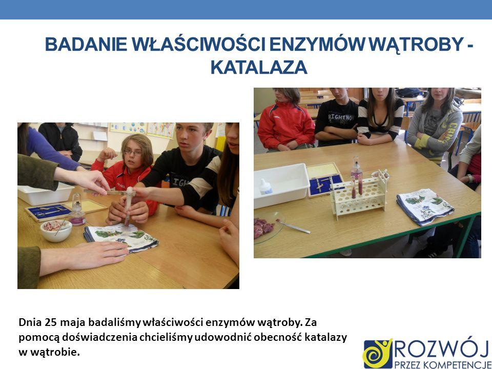 Badanie właściwości enzymów Wątroby - Katalaza