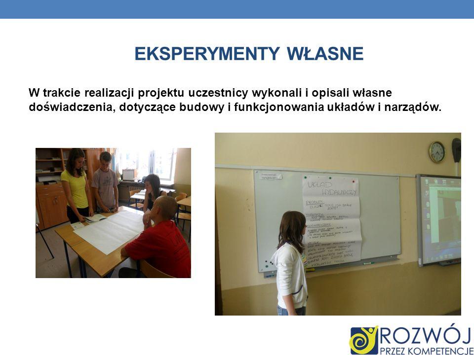 Eksperymenty własne